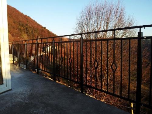 zelezne ograje 24